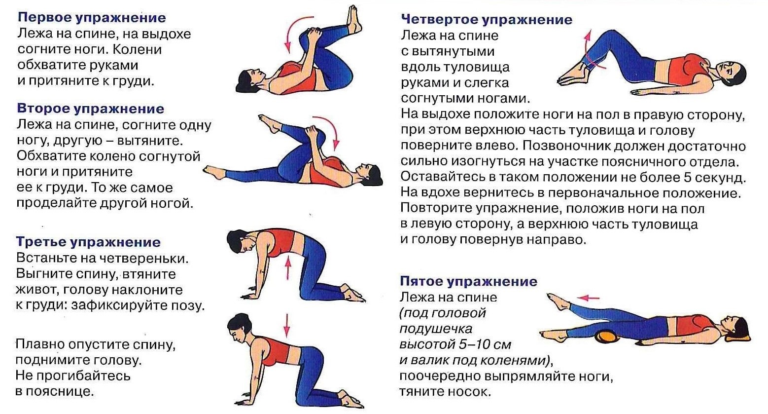 Упражнения для позвоночника на растягивание