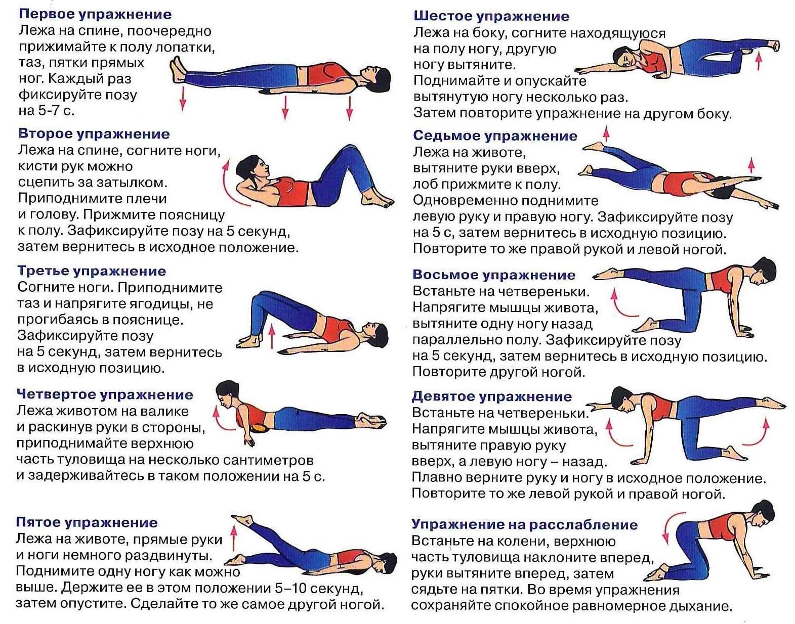 упражнения для укрепления мышц спины и позвоночника